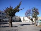 中野区立平和の森小学校(旧野方小学校)