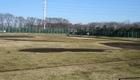 和田堀公園野球場